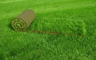 Как стелить рулонный газон